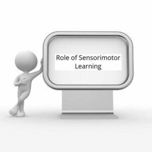Role of Sensorimotor Learning