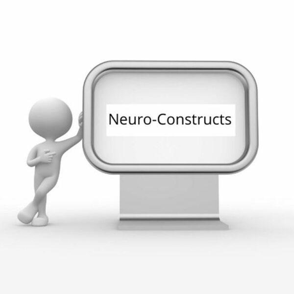 Neuro-Constructs